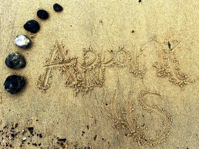 Appoint Us in the Sand - Great Yarmouth